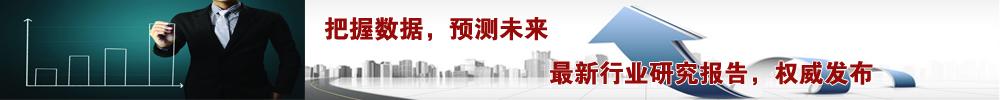 中国轻工业信息中心行业研究报告