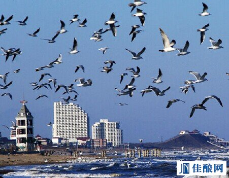 秦皇岛大力推进酒庄酒堡旅游行业发展
